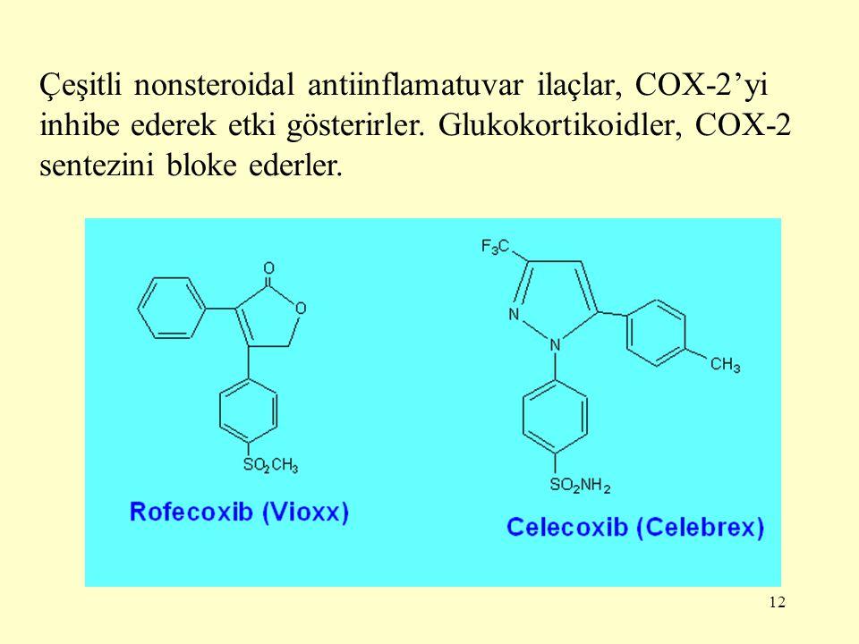 12 Çeşitli nonsteroidal antiinflamatuvar ilaçlar, COX-2'yi inhibe ederek etki gösterirler. Glukokortikoidler, COX-2 sentezini bloke ederler.