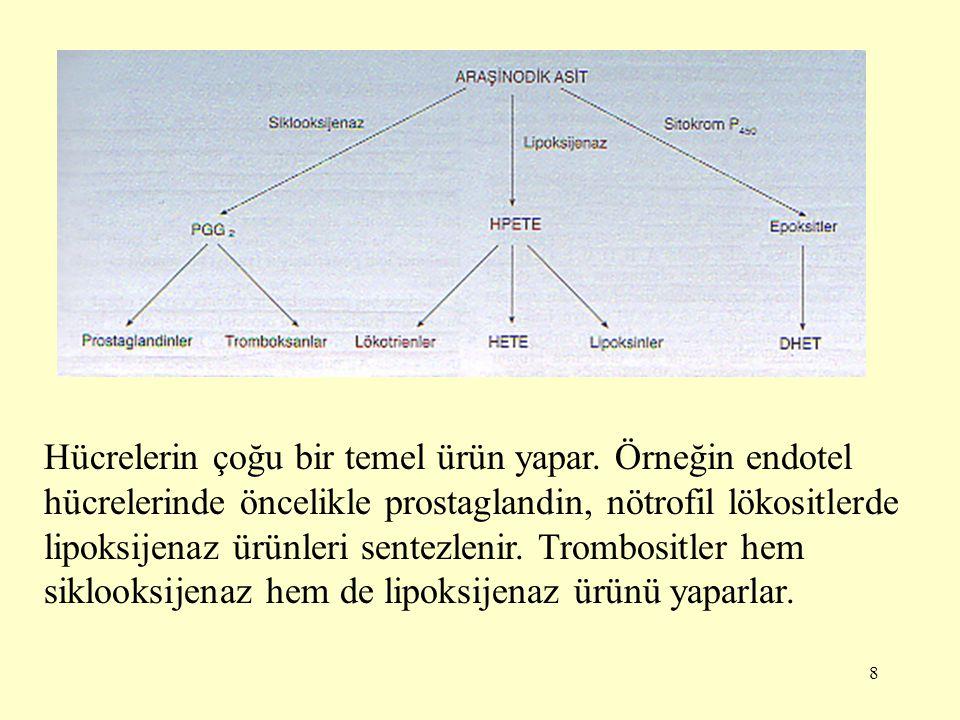 9 Siklooksijenaz yolu 1-serisinden prostaglandinlerin öncülü eikozatrienoik asit, 2-serisinden prostaglandinlerin öncülü araşidonik asit, 3- serisinden prostaglandinlerin öncülü eikozapentaenoik asittir.