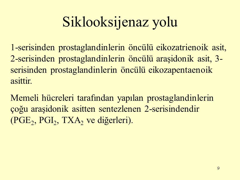 9 Siklooksijenaz yolu 1-serisinden prostaglandinlerin öncülü eikozatrienoik asit, 2-serisinden prostaglandinlerin öncülü araşidonik asit, 3- serisinde