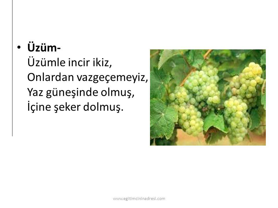 Üzüm- Üzümle incir ikiz, Onlardan vazgeçemeyiz, Yaz güneşinde olmuş, İçine şeker dolmuş. www.egitimcininadresi.com