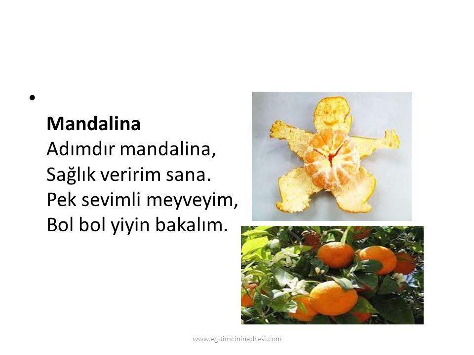 Mandalina Adımdır mandalina, Sağlık veririm sana. Pek sevimli meyveyim, Bol bol yiyin bakalım. www.egitimcininadresi.com