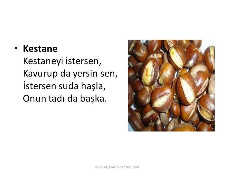 Kestane Kestaneyi istersen, Kavurup da yersin sen, İstersen suda haşla, Onun tadı da başka. www.egitimcininadresi.com
