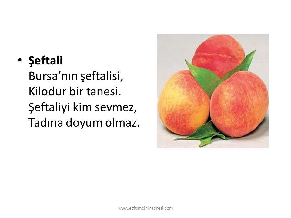 Şeftali Bursa'nın şeftalisi, Kilodur bir tanesi. Şeftaliyi kim sevmez, Tadına doyum olmaz. www.egitimcininadresi.com