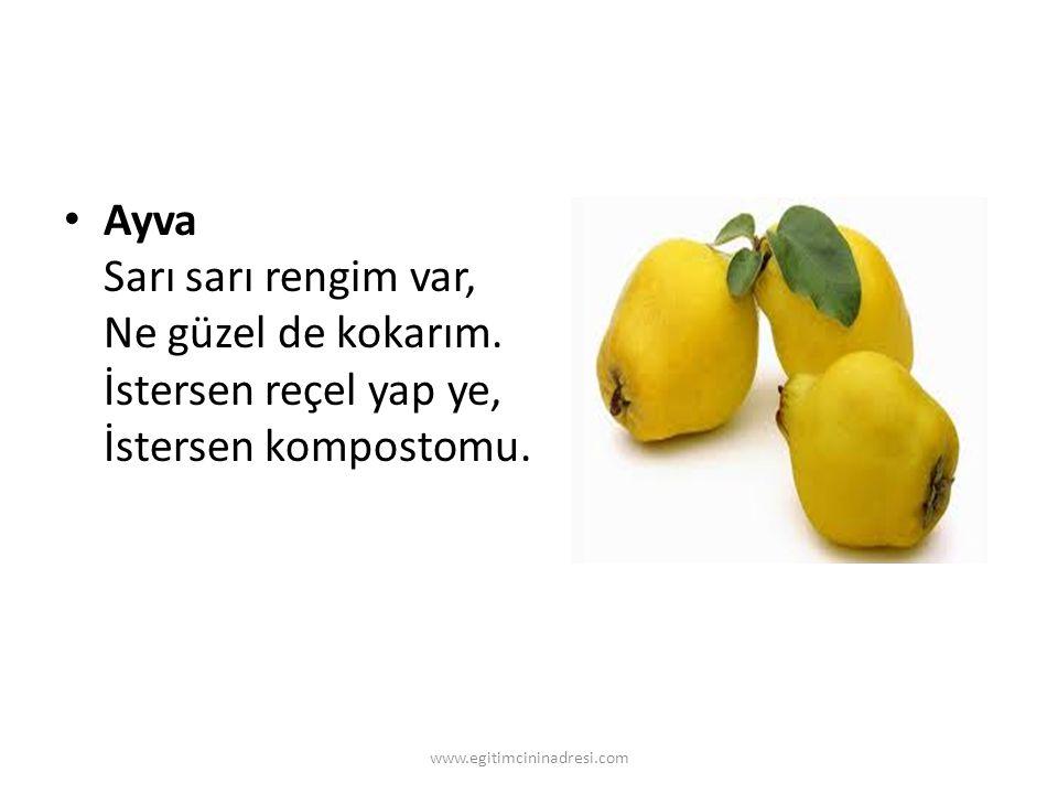 Ayva Sarı sarı rengim var, Ne güzel de kokarım. İstersen reçel yap ye, İstersen kompostomu. www.egitimcininadresi.com