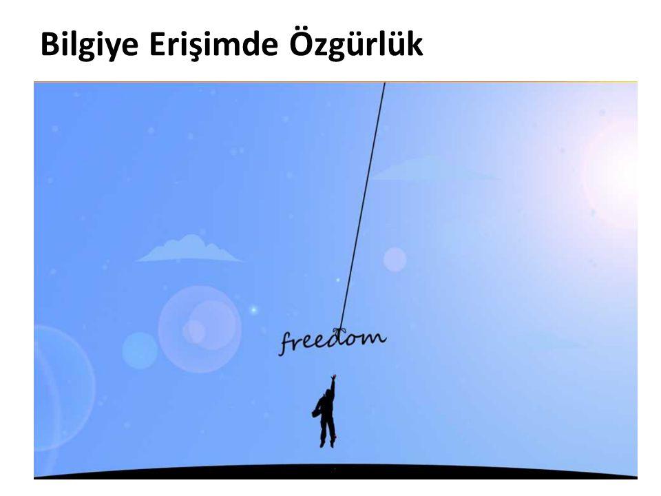 Bilgiye Erişimde Özgürlük