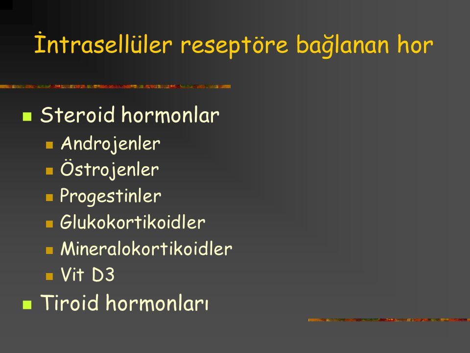 İntrasellüler reseptöre bağlanan hor Steroid hormonlar Androjenler Östrojenler Progestinler Glukokortikoidler Mineralokortikoidler Vit D3 Tiroid hormonları