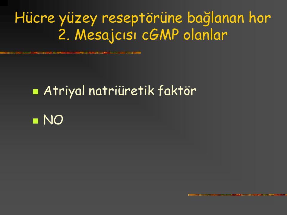 Hücre yüzey reseptörüne bağlanan hor 2. Mesajcısı cGMP olanlar Atriyal natriüretik faktör NO