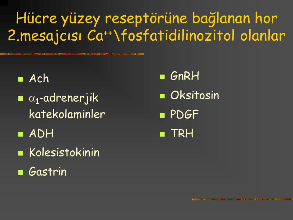 Hücre yüzey reseptörüne bağlanan hor 2.mesajcısı Ca ++ \fosfatidilinozitol olanlar Ach  1 -adrenerjik katekolaminler ADH Kolesistokinin Gastrin GnRH Oksitosin PDGF TRH