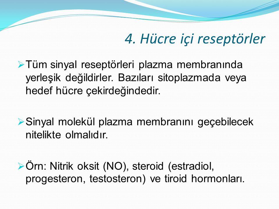 4. Hücre içi reseptörler  Tüm sinyal reseptörleri plazma membranında yerleşik değildirler. Bazıları sitoplazmada veya hedef hücre çekirdeğindedir. 