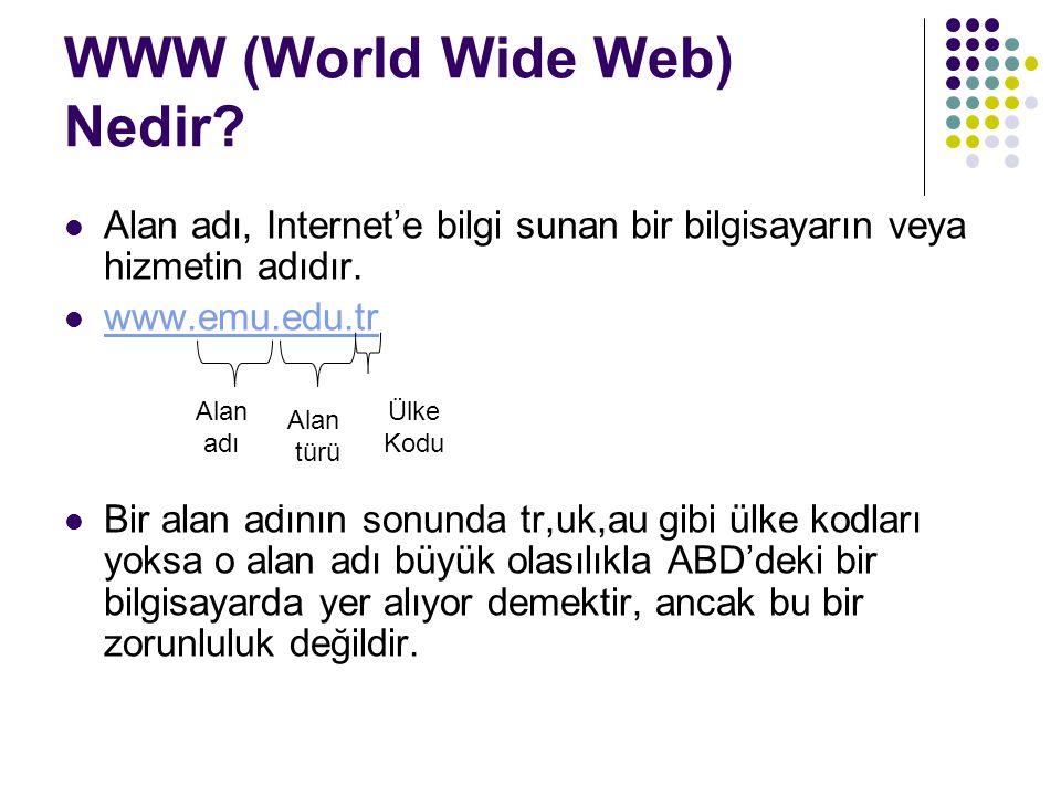 WWW (World Wide Web) Nedir? Alan adı, Internet'e bilgi sunan bir bilgisayarın veya hizmetin adıdır. www.emu.edu.tr Bir alan adının sonunda tr,uk,au gi