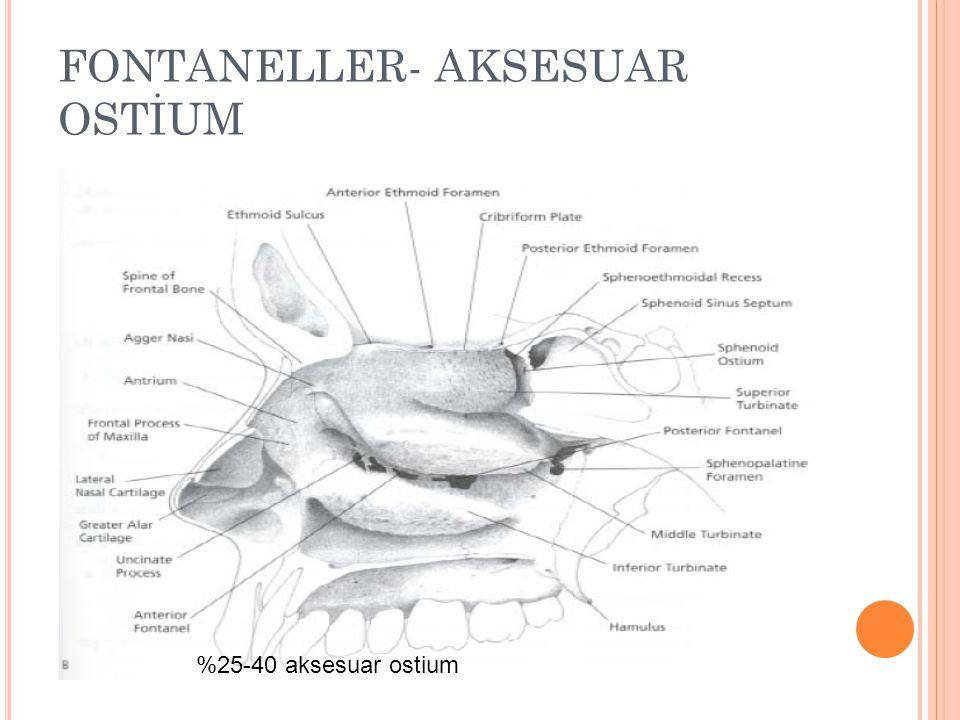 FONTANELLER- AKSESUAR OSTİUM %25-40 aksesuar ostium