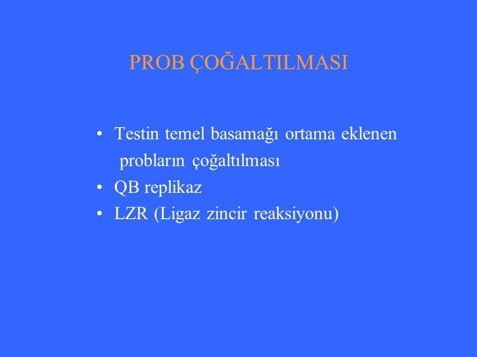 PROB ÇOĞALTILMASI Testin temel basamağı ortama eklenen probların çoğaltılması QB replikaz LZR (Ligaz zincir reaksiyonu)