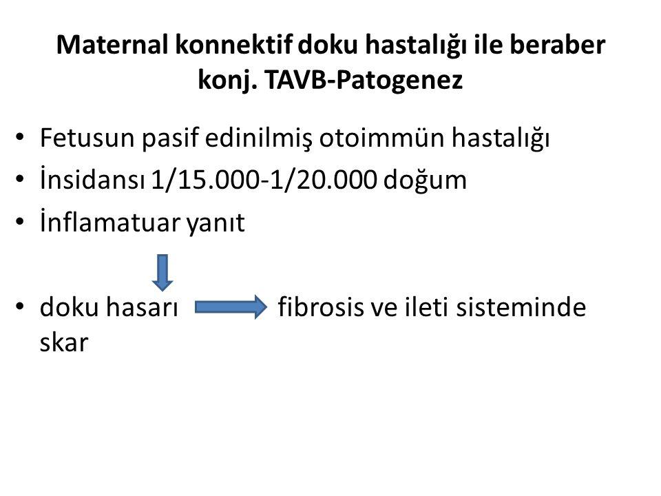 Maternal konnektif doku hastalığı ile beraber konj. TAVB-Patogenez Fetusun pasif edinilmiş otoimmün hastalığı İnsidansı 1/15.000-1/20.000 doğum İnflam