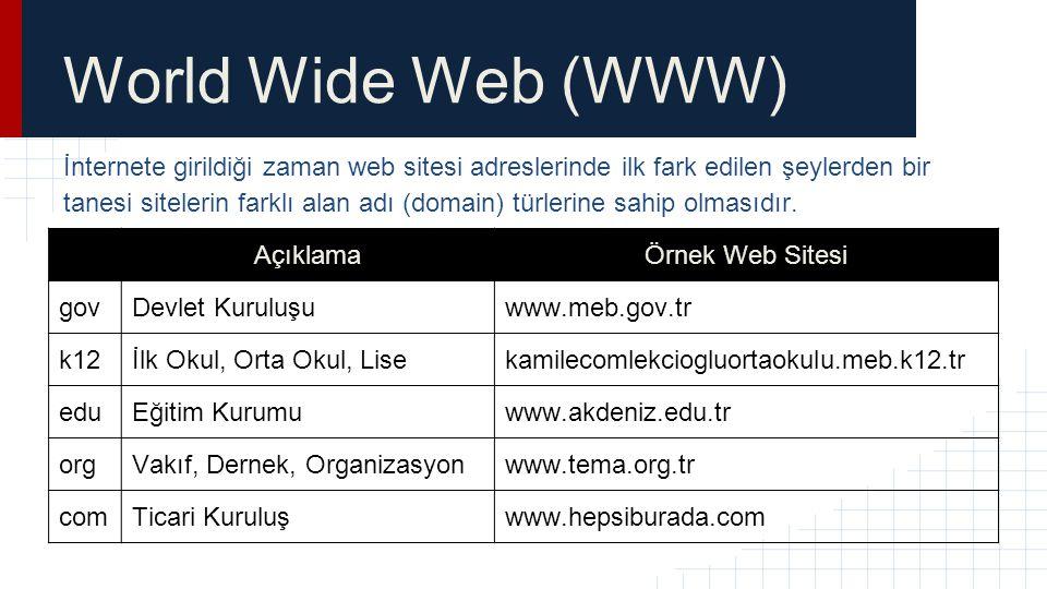 World Wide Web (WWW) İnternete girildiği zaman web sitesi adreslerinde ilk fark edilen şeylerden bir tanesi sitelerin farklı alan adı (domain) türleri