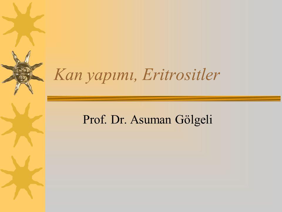 Kan yapımı, Eritrositler Prof. Dr. Asuman Gölgeli