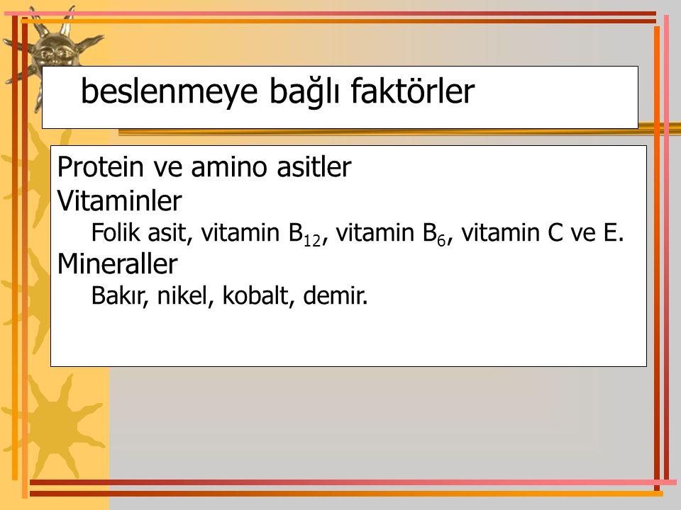 beslenmeye bağlı faktörler Protein ve amino asitler Vitaminler Folik asit, vitamin B 12, vitamin B 6, vitamin C ve E. Mineraller Bakır, nikel, kobalt,