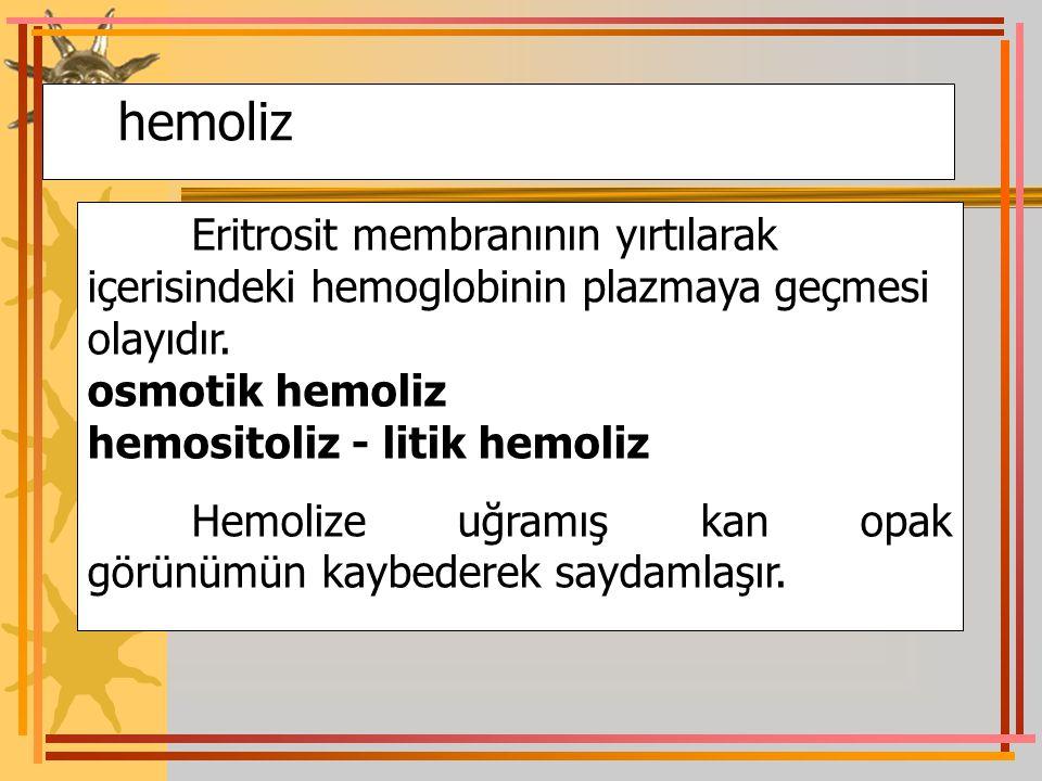 hemoliz Eritrosit membranının yırtılarak içerisindeki hemoglobinin plazmaya geçmesi olayıdır. osmotik hemoliz hemositoliz - litik hemoliz Hemolize uğr