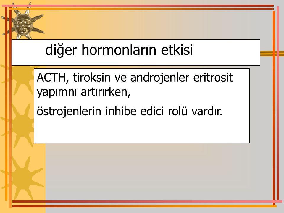 diğer hormonların etkisi ACTH, tiroksin ve androjenler eritrosit yapımnı artırırken, östrojenlerin inhibe edici rolü vardır.