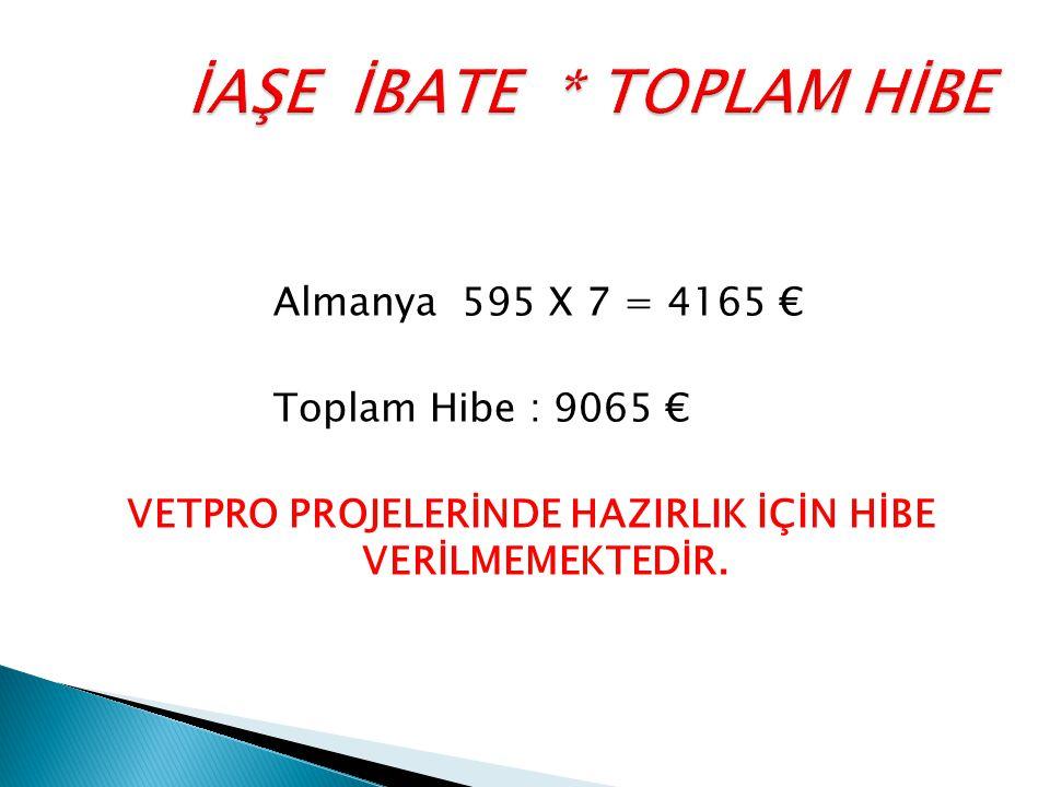 Almanya 595 X 7 = 4165 € Toplam Hibe : 9065 € VETPRO PROJELERİNDE HAZIRLIK İÇİN HİBE VERİLMEMEKTEDİR.