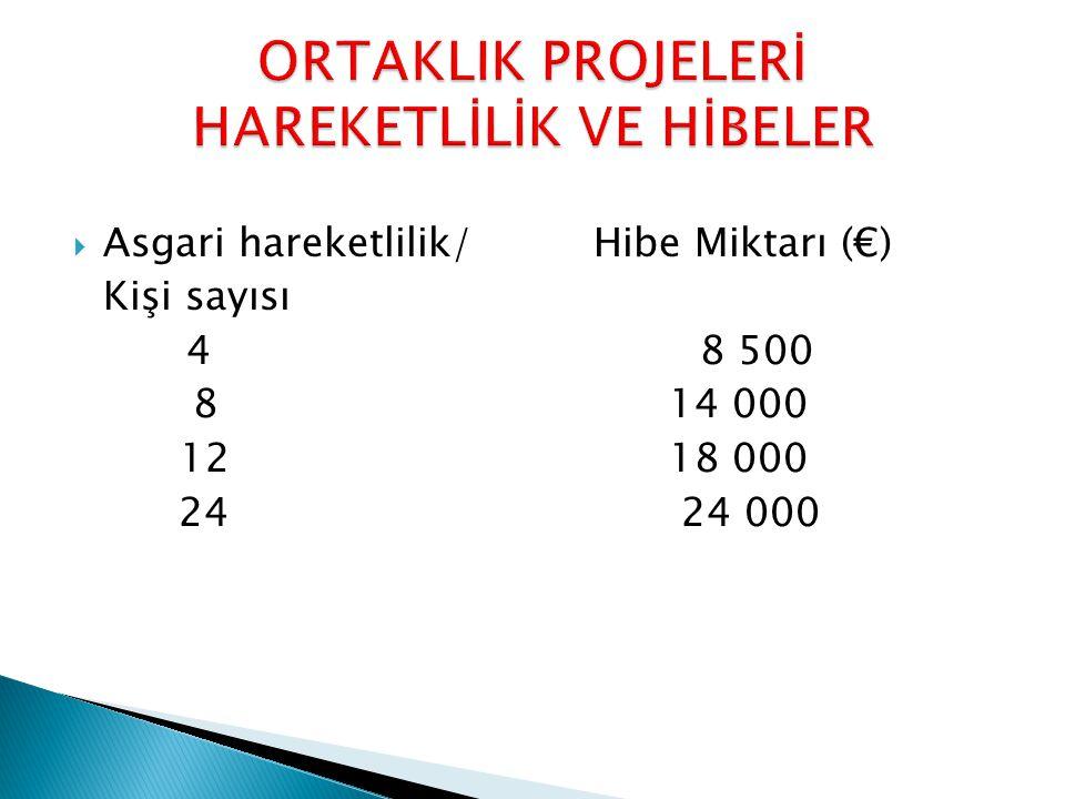  Asgari hareketlilik/Hibe Miktarı (€) Kişi sayısı 48 500 8 14 000 12 18 000 24 24 000