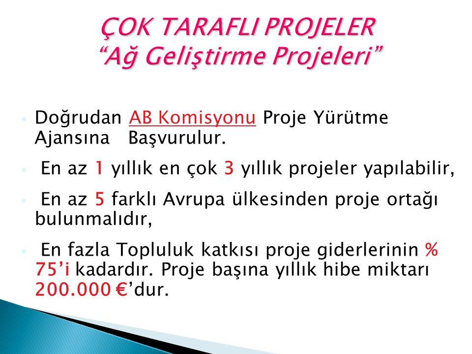  Doğrudan AB Komisyonu Proje Yürütme Ajansına Başvurulur.