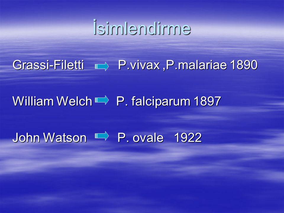 İsimlendirme Grassi-Filetti P.vivax,P.malariae 1890 William Welch P. falciparum 1897 John Watson P. ovale 1922