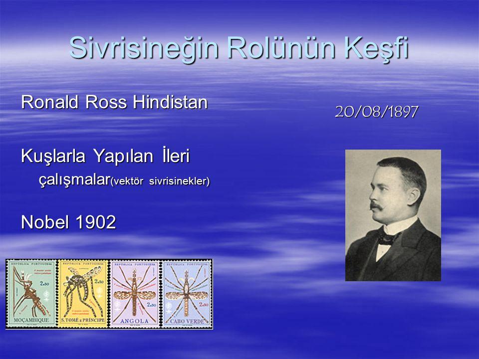 Sivrisineğin Rolünün Keşfi Ronald Ross Hindistan Kuşlarla Yapılan İleri çalışmalar (vektör sivrisinekler) Nobel 1902 20/08/1897