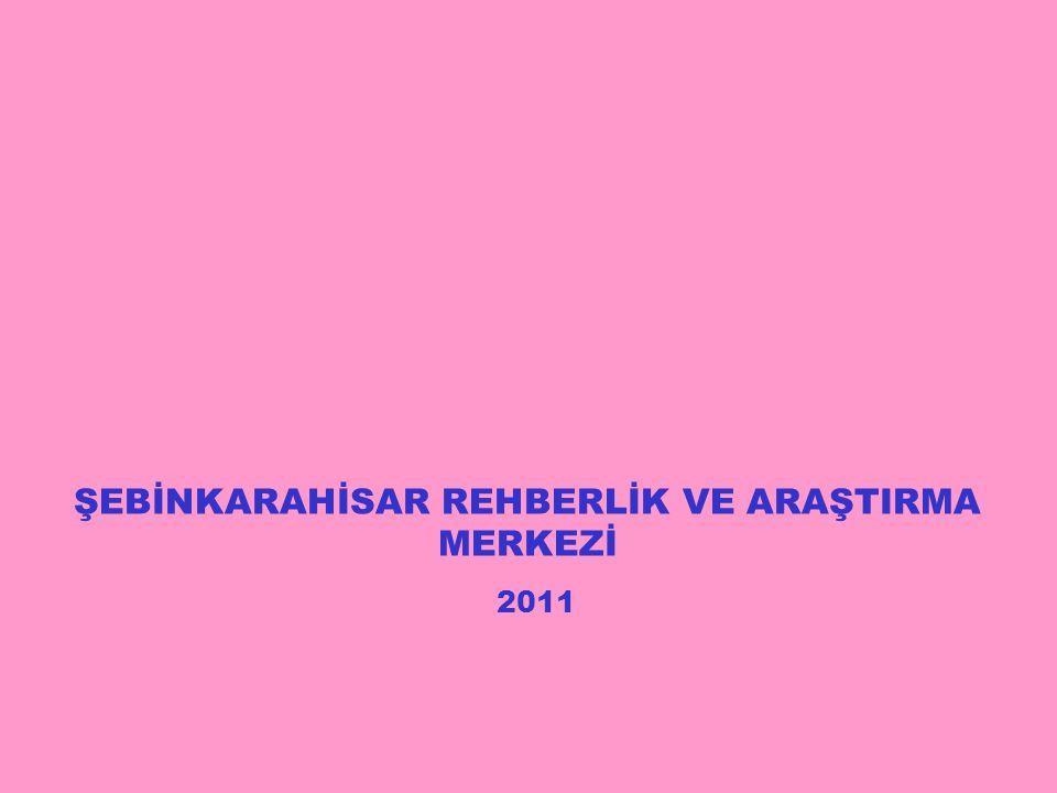 2011 ŞEBİNKARAHİSAR REHBERLİK VE ARAŞTIRMA MERKEZİ