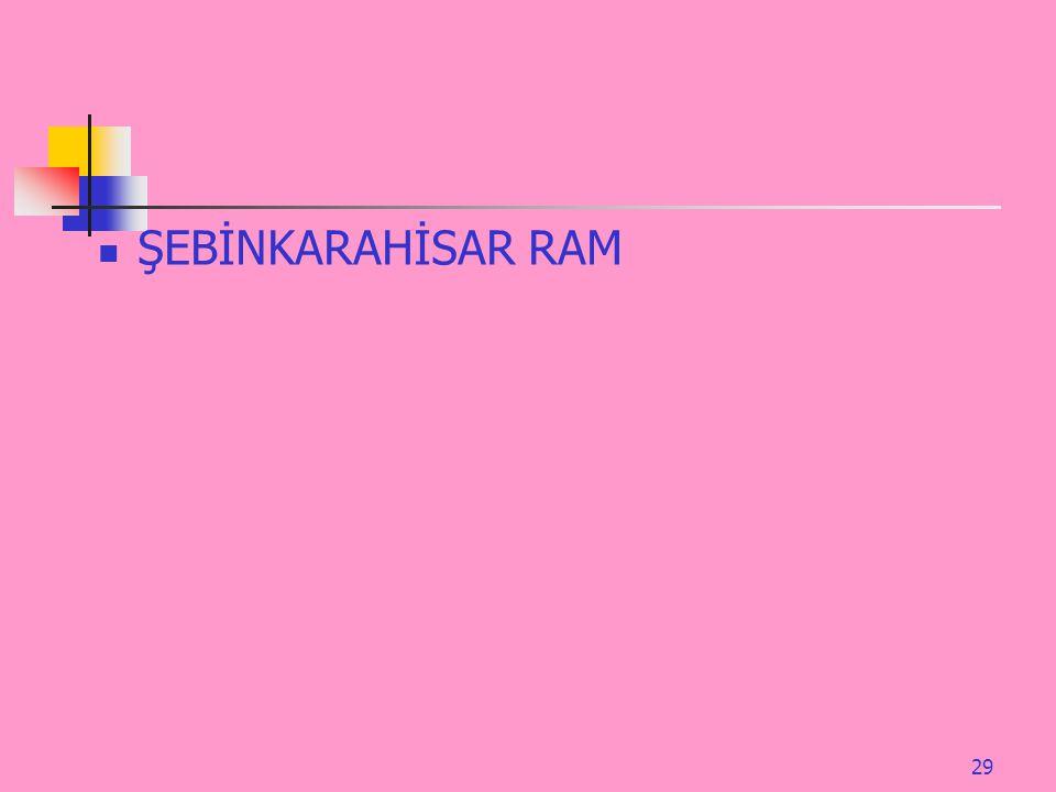29 ŞEBİNKARAHİSAR RAM