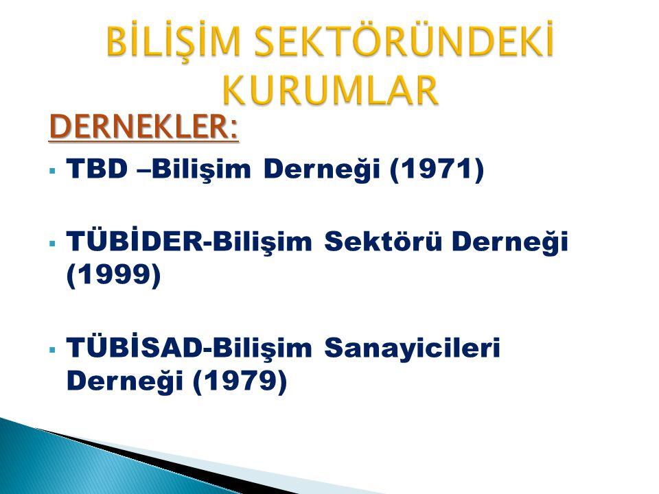 DERNEKLER:  TBD –Bilişim Derneği (1971)  TÜBİDER-Bilişim Sektörü Derneği (1999)  TÜBİSAD-Bilişim Sanayicileri Derneği (1979)