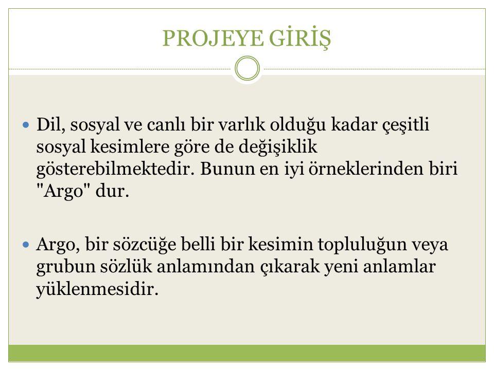 PROJEYE GİRİŞ Prof.Dr.
