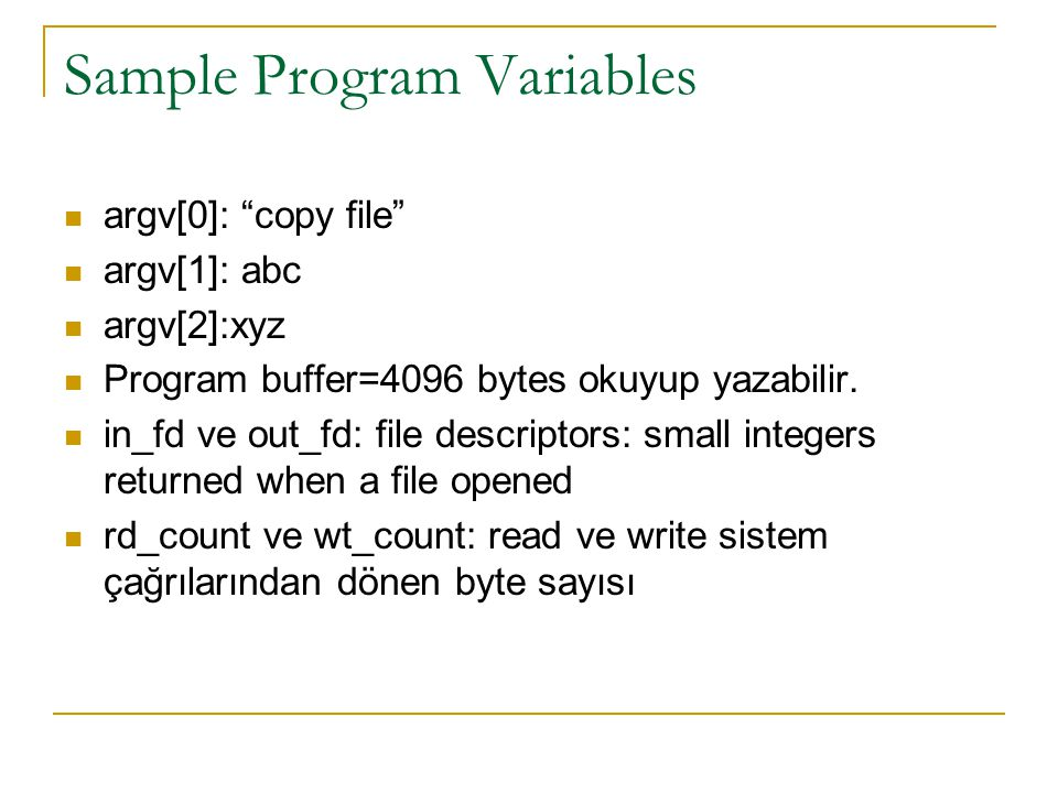 "Sample Program Variables argv[0]: ""copy file"" argv[1]: abc argv[2]:xyz Program buffer=4096 bytes okuyup yazabilir. in_fd ve out_fd: file descriptors:"