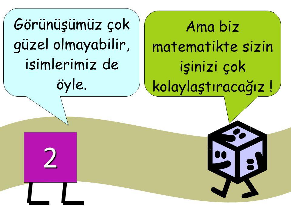 2 Ama biz matematikte sizin işinizi çok kolaylaştıracağız ! Görünüşümüz çok güzel olmayabilir, isimlerimiz de öyle.