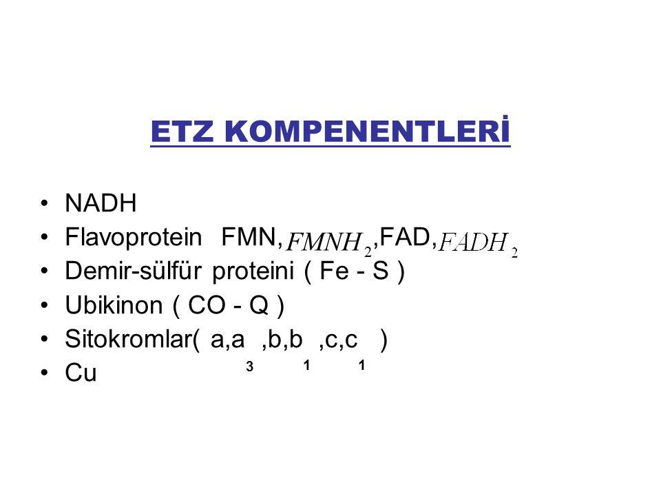 ETZ KOMPENENTLERİ NADH Flavoprotein FMN,FMNH2,FAD, Demir-sülfür proteini ( Fe - S ) Ubikinon ( CO - Q ) Sitokromlar( a,a,b,b,c,c ) Cu 2 FMNH 3 11