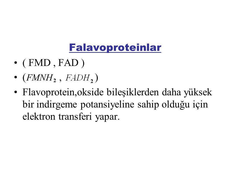 Falavoproteinlar ( FMD, FAD ) (, ) Flavoprotein,okside bileşiklerden daha yüksek bir indirgeme potansiyeline sahip olduğu için elektron transferi yapa