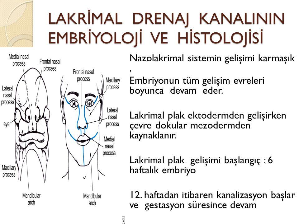 LAKR İ MAL DRENAJ KANALININ EMBR İ YOLOJ İ VE H İ STOLOJ İ S İ Nazolakrimal sistemin gelişimi karmaşık, Embriyonun tüm gelişim evreleri boyunca devam