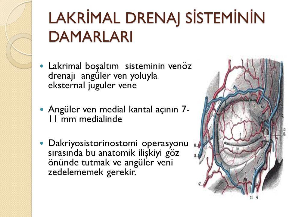 LAKR İ MAL DRENAJ S İ STEM İ N İ N DAMARLARI Lakrimal boşaltım sisteminin venöz drenajı angüler ven yoluyla eksternal juguler vene Angüler ven medial