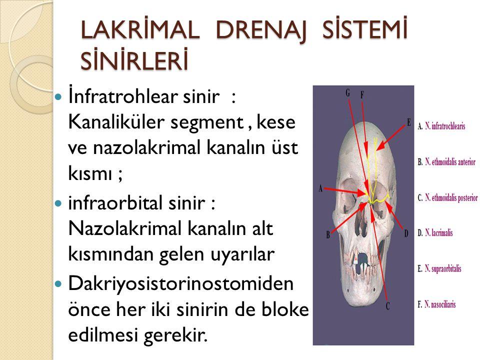 LAKR İ MAL DRENAJ S İ STEM İ S İ N İ RLER İ İ nfratrohlear sinir : Kanaliküler segment, kese ve nazolakrimal kanalın üst kısmı ; infraorbital sinir :