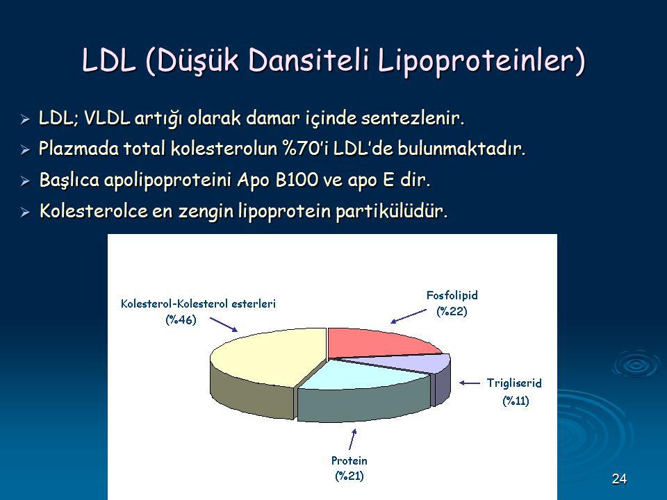 24 LDL (Düşük Dansiteli Lipoproteinler)  LDL; VLDL artığı olarak damar içinde sentezlenir.  Plazmada total kolesterolun %70'i LDL'de bulunmaktadır.