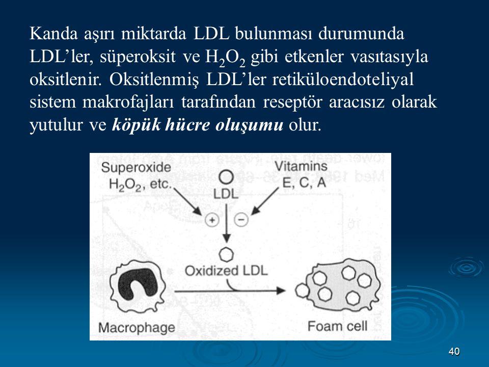 40 Kanda aşırı miktarda LDL bulunması durumunda LDL'ler, süperoksit ve H 2 O 2 gibi etkenler vasıtasıyla oksitlenir. Oksitlenmiş LDL'ler retiküloendot