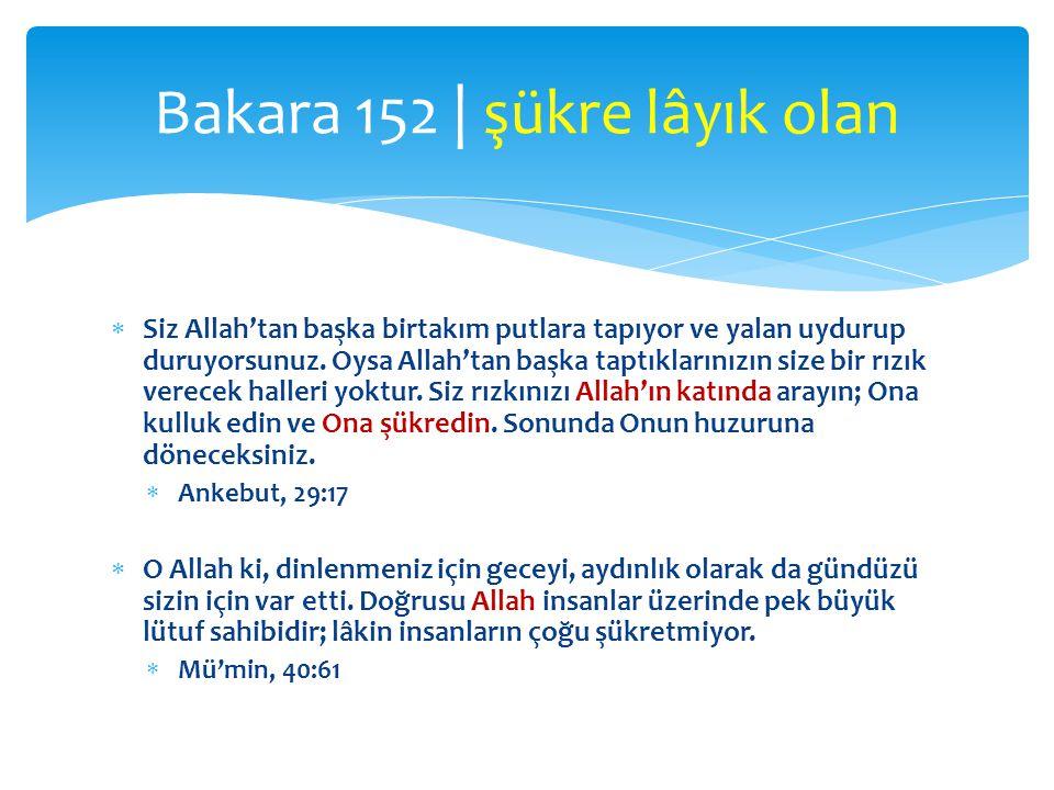  Siz Allah'tan başka birtakım putlara tapıyor ve yalan uydurup duruyorsunuz.