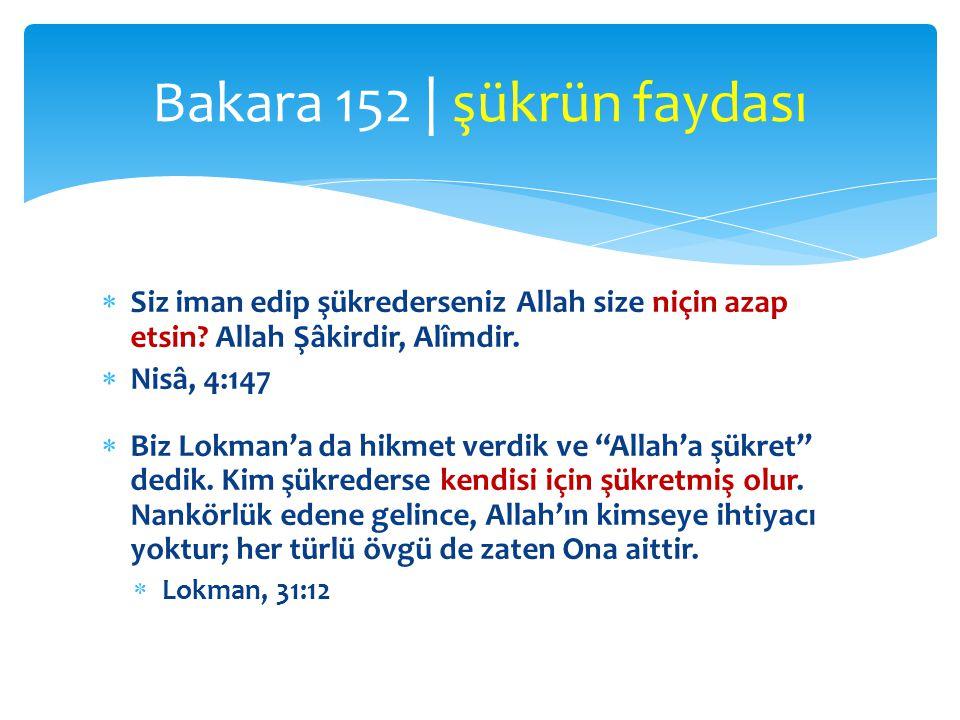 """ Siz iman edip şükrederseniz Allah size niçin azap etsin? Allah Şâkirdir, Alîmdir.  Nisâ, 4:147  Biz Lokman'a da hikmet verdik ve """"Allah'a şükret"""""""