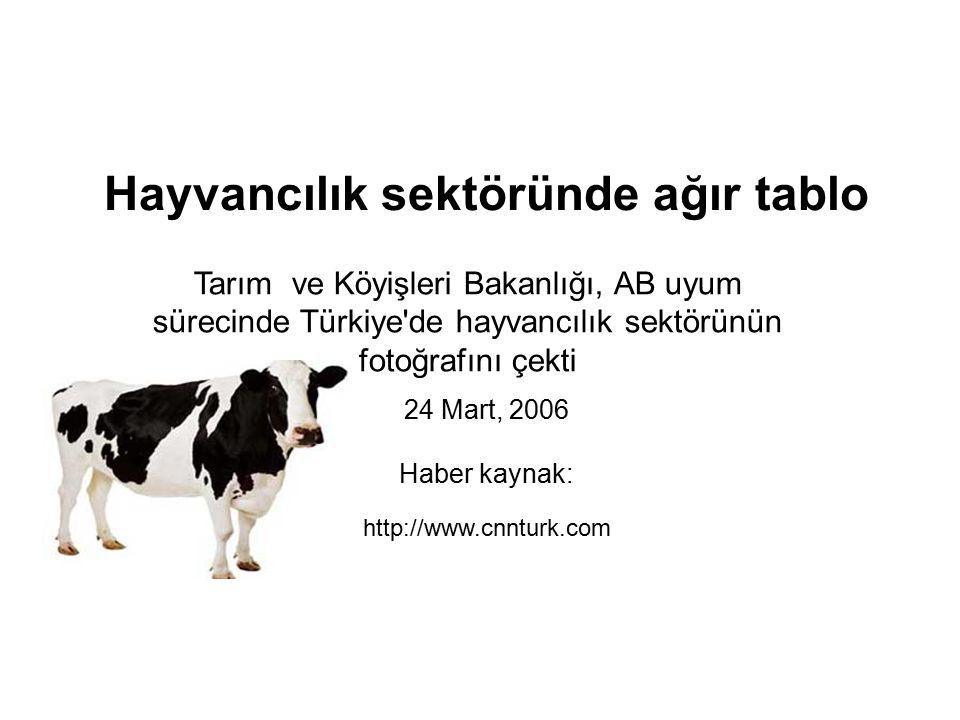 Hayvancılık sektöründe ağır tablo 24 Mart, 2006 Haber kaynak: http://www.cnnturk.com Tarım ve Köyişleri Bakanlığı, AB uyum sürecinde Türkiye de hayvancılık sektörünün fotoğrafını çekti