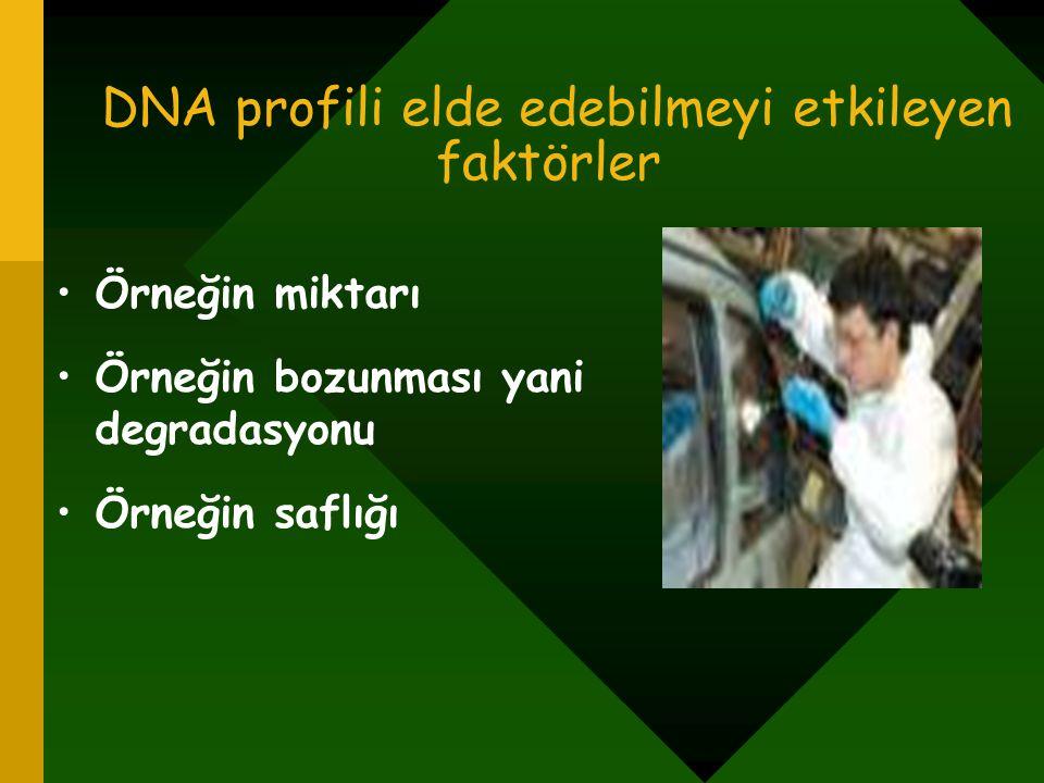 DNA profili elde edebilmeyi etkileyen faktörler Örneğin miktarı Örneğin bozunması yani degradasyonu Örneğin saflığı