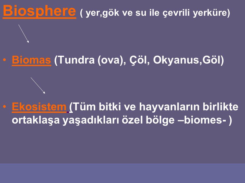 Biosphere ( yer,gök ve su ile çevrili yerküre) Biomas (Tundra (ova), Çöl, Okyanus,Göl) Ekosistem (Tüm bitki ve hayvanların birlikte ortaklaşa yaşadıkları özel bölge –biomes- )