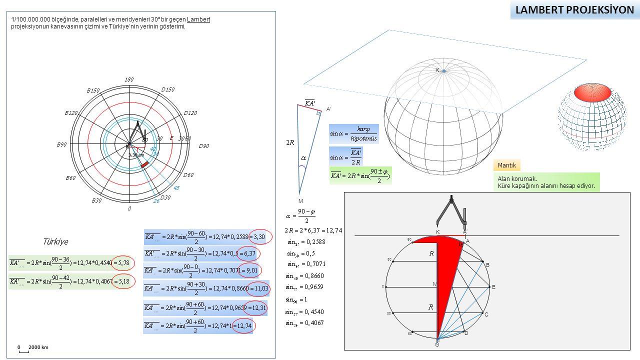 Lambert Projeksiyon (Kutupsal) Dünyanın tamamını gösterir.