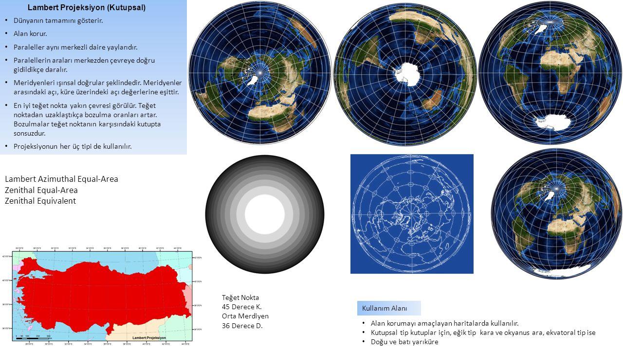 Lambert Projeksiyon (Kutupsal) Dünyanın tamamını gösterir. Alan korur. Paraleller aynı merkezli daire yaylarıdır. Paralellerin araları merkezden çevre