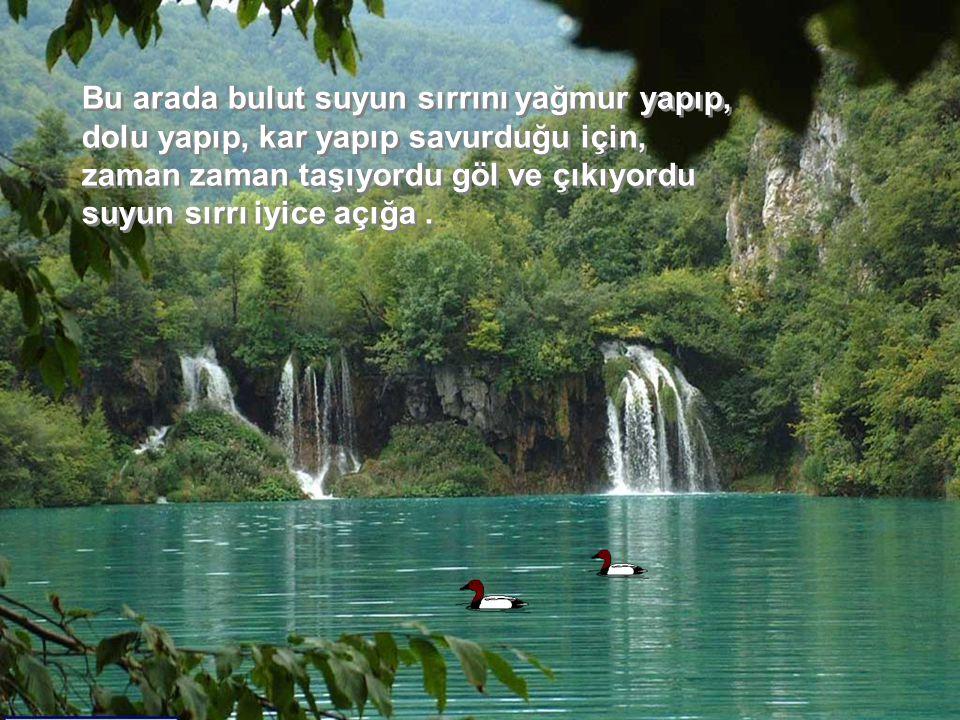Sonra nehre verdi su sırrını.Nehir de aldı suyun sırrını çekti gitti.
