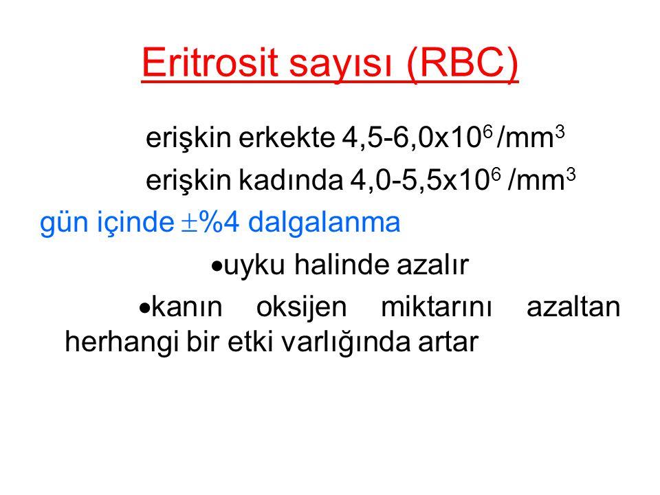 Eritrosit sayısı (RBC) erişkin erkekte 4,5-6,0x10 6 /mm 3 erişkin kadında 4,0-5,5x10 6 /mm 3 gün içinde  %4 dalgalanma  uyku halinde azalır  kanın