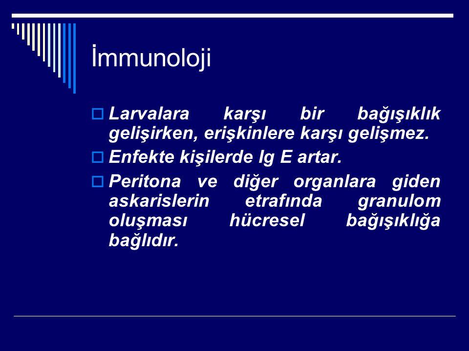 İmmunoloji  Larvalara karşı bir bağışıklık gelişirken, erişkinlere karşı gelişmez.  Enfekte kişilerde Ig E artar.  Peritona ve diğer organlara gide